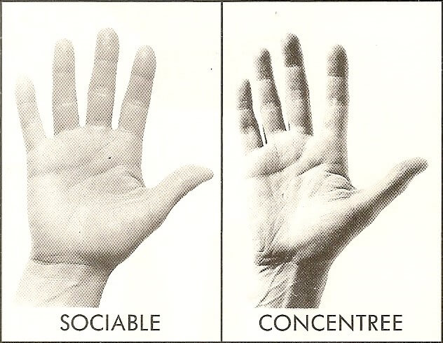 main type air sociable concentree